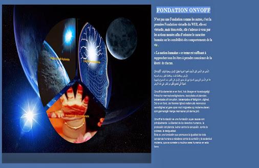 fondation vvv